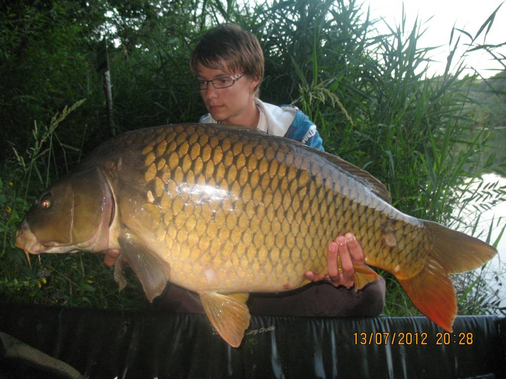 Where To Catch Large Carp In Slovenia Sloveniafishing Info